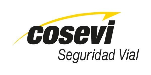 Logo Consejo de Seguridad Vial